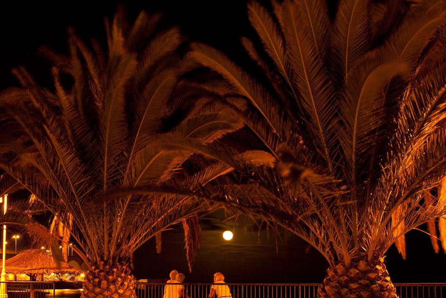 Nachtleben in Santa Cruz