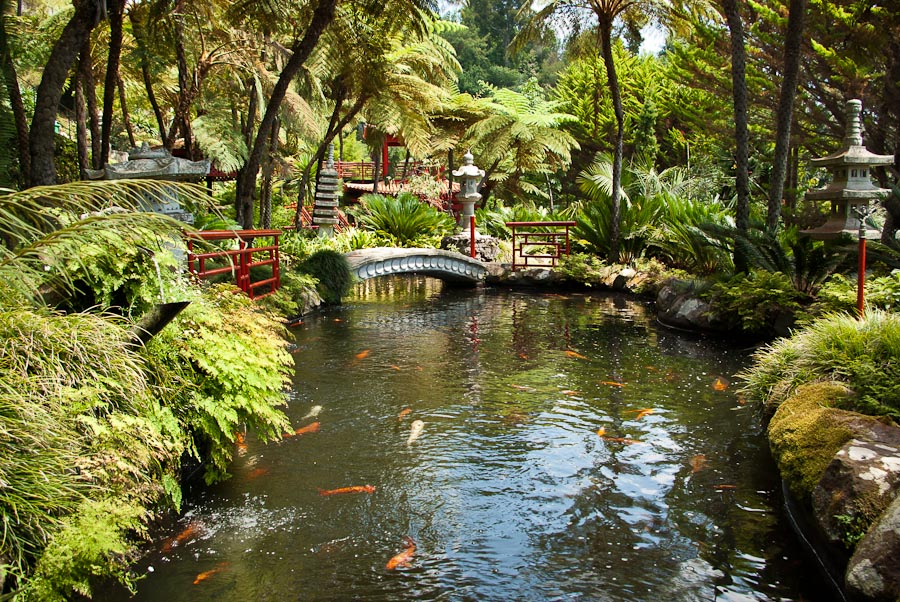Berg Monte, im Tropischen Garten