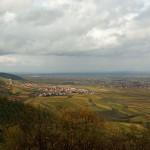Pfaelzerwald