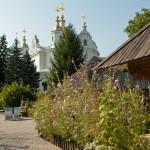 Kotlyarevsky's homestead
