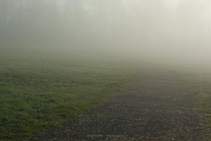 Nebel. Kleinaspach