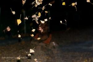 Herbst, Blätter, Spiel
