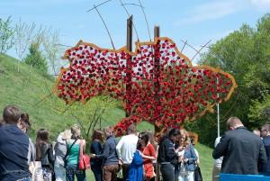 Die Karte von Ukraine aus Mohn Blumen