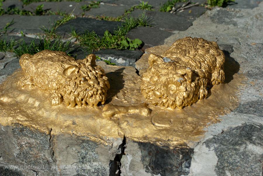 Die goldenen Katzen