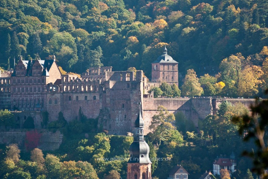 heidelberg-by-iryna-mathes-3524