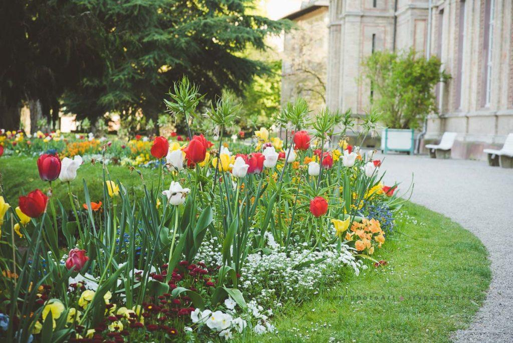 Karlsruhe-mai17-irynamathes-309
