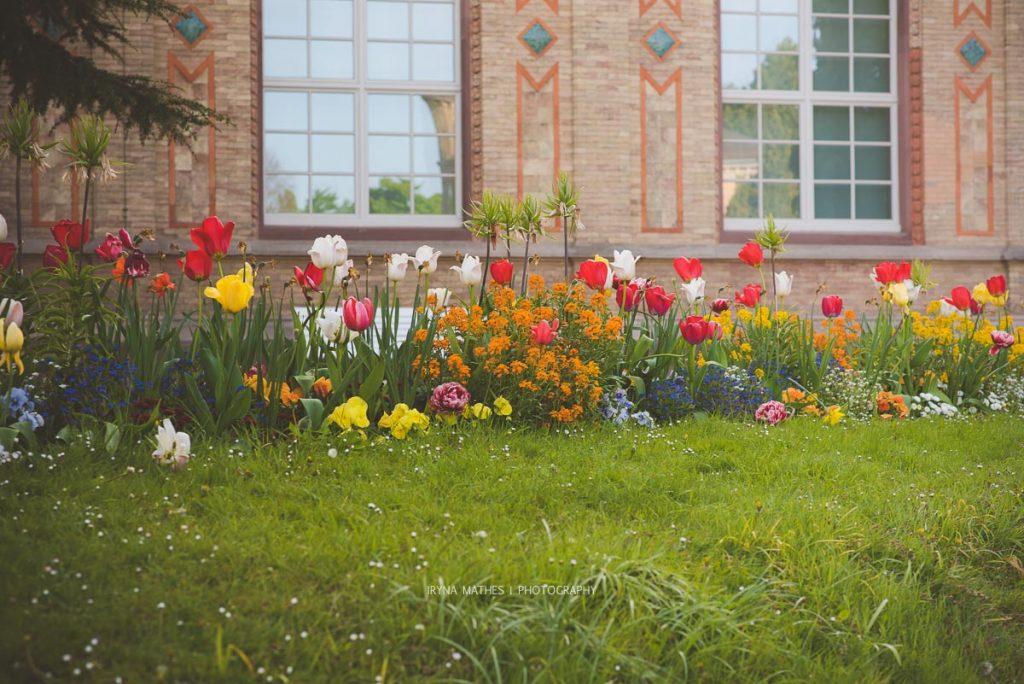 Karlsruhe-mai17-irynamathes-380