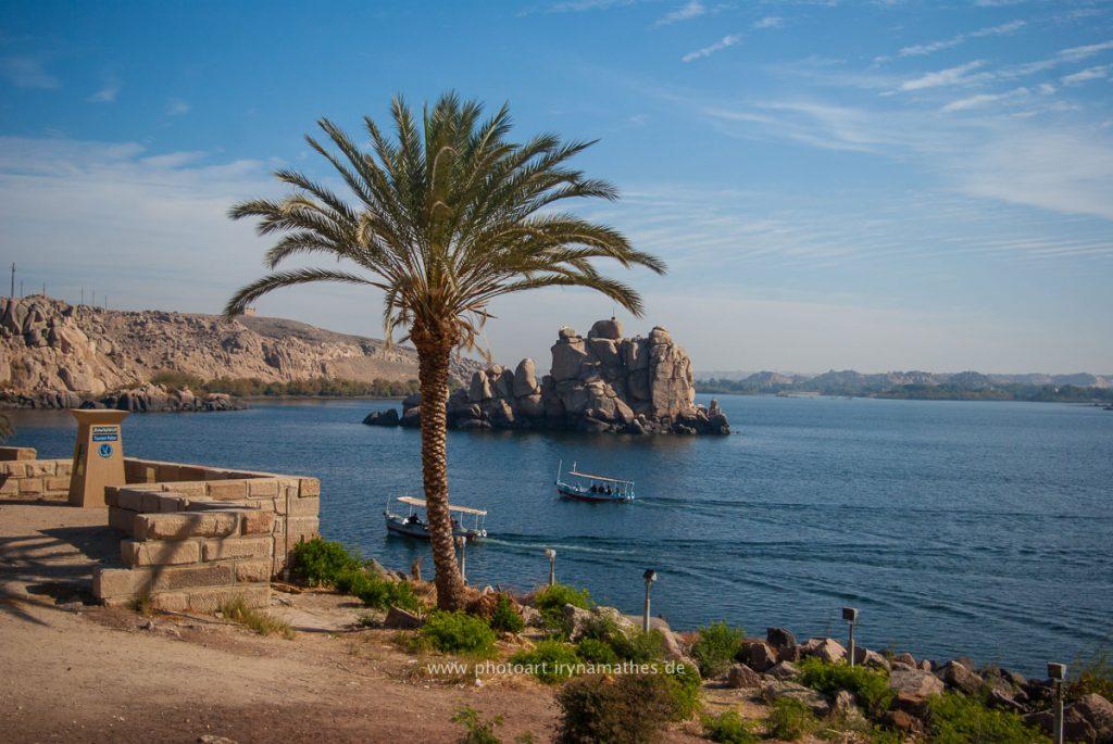 Isis-Egypt-web-3940