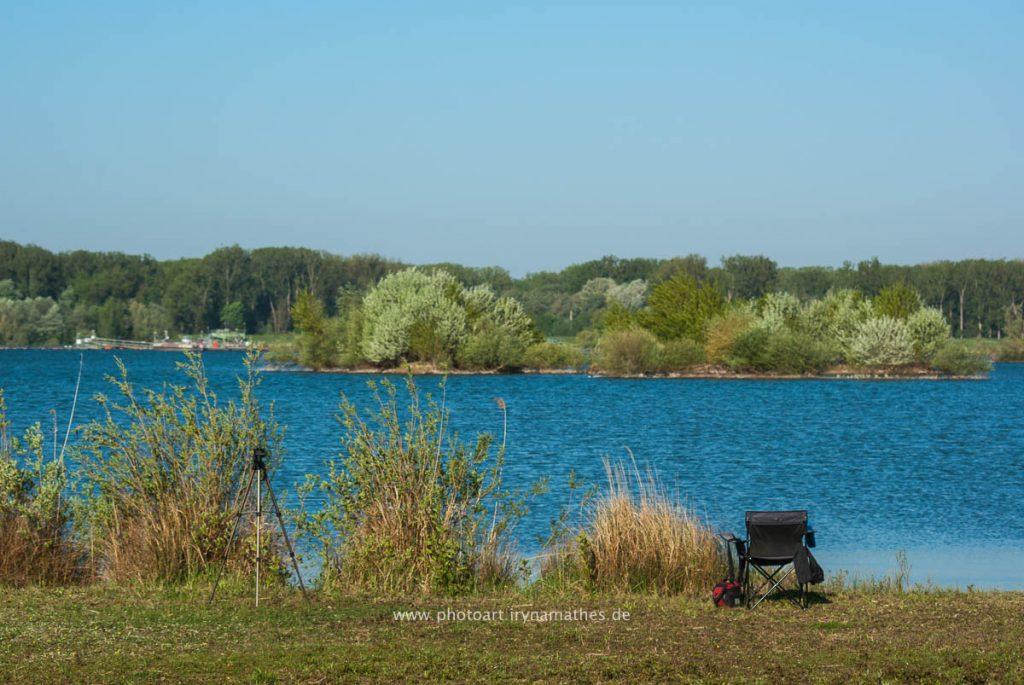 Landschaft-Natur-Dettenheim-web-4408