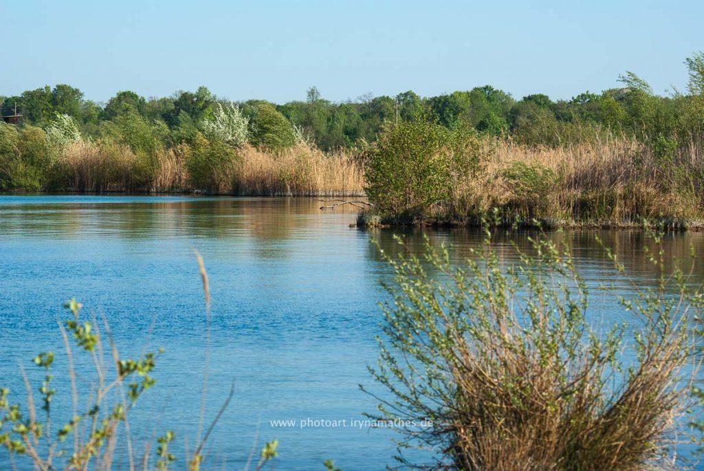 Landschaft-Natur-Dettenheim-web-4425
