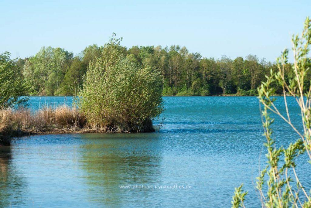 Landschaft-Natur-Dettenheim-web-4429