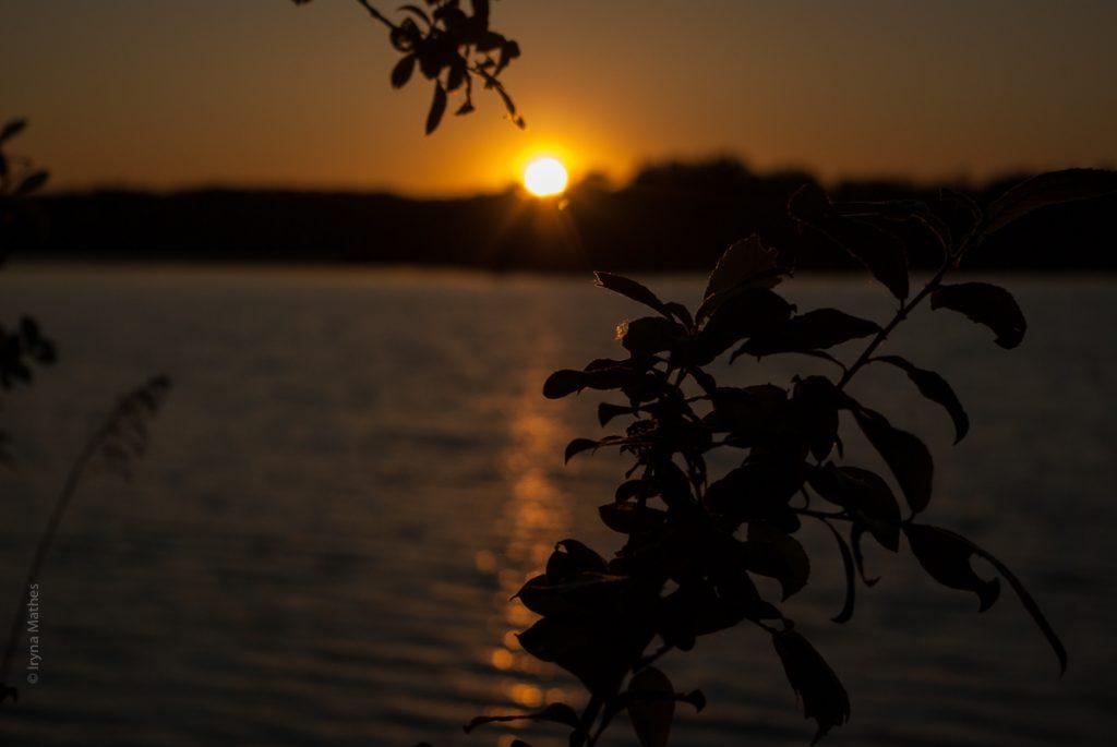 natur-abend-Landschaft-4465