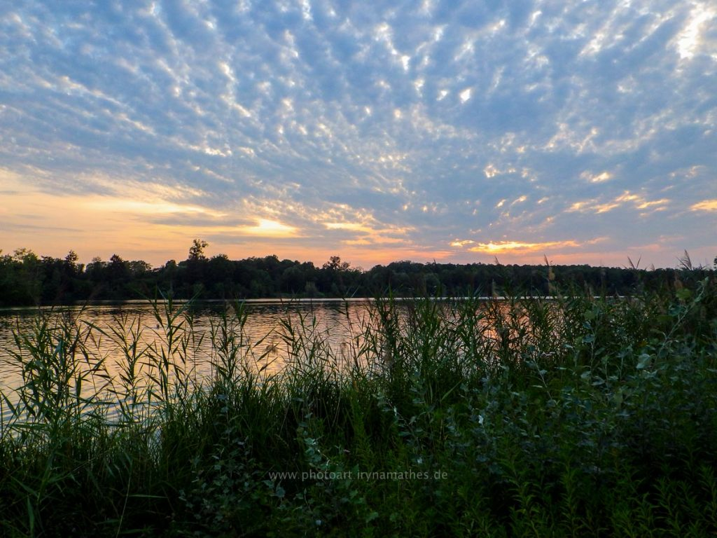 Baggersee-sommer-web-0660