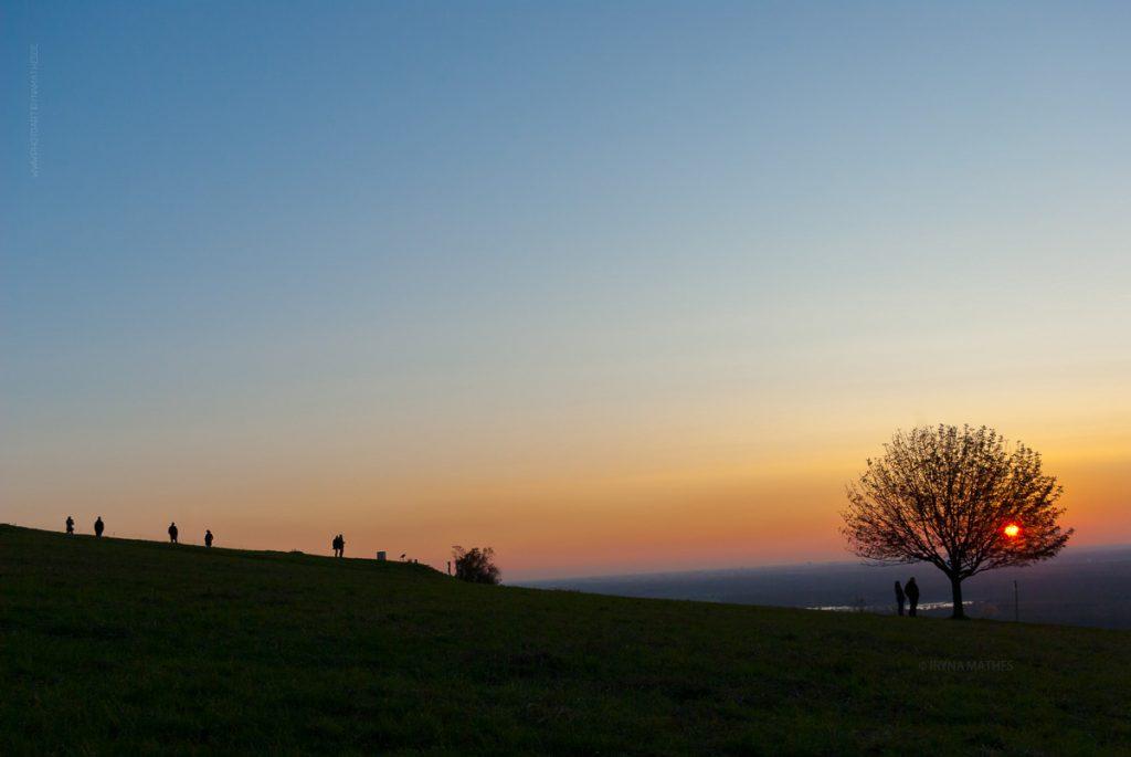Michaelsberg-Herbst-Abend-web-5411-2