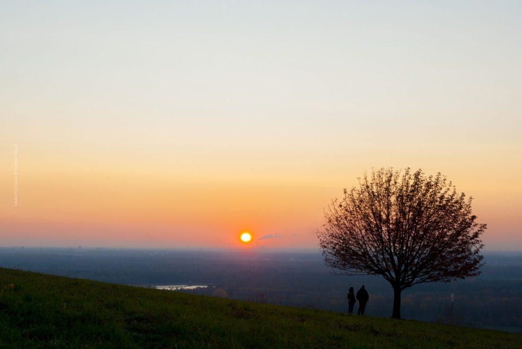 Michaelsberg-Herbst-Abend-web-5419