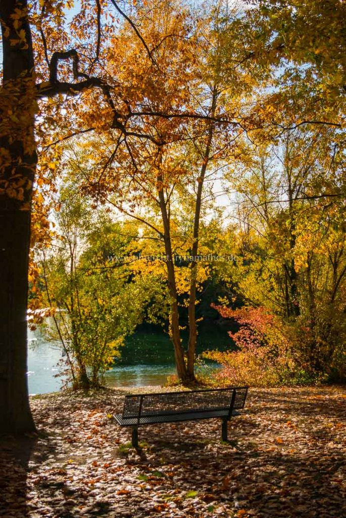 untergrombach-baggersee-herbst-2020-web-5001