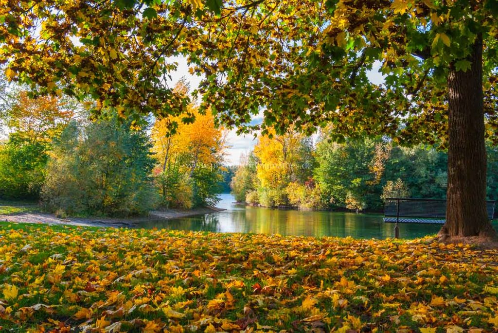 untergrombach-baggersee-herbst-2020-web-5020