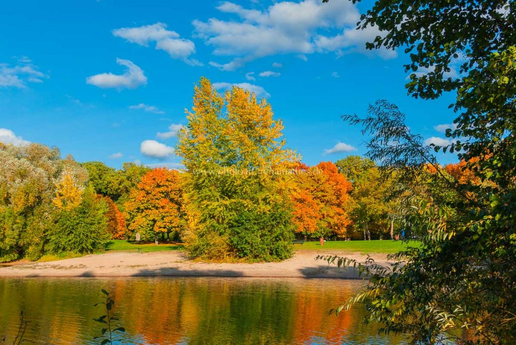 untergrombach-baggersee-herbst-2020-web-5042