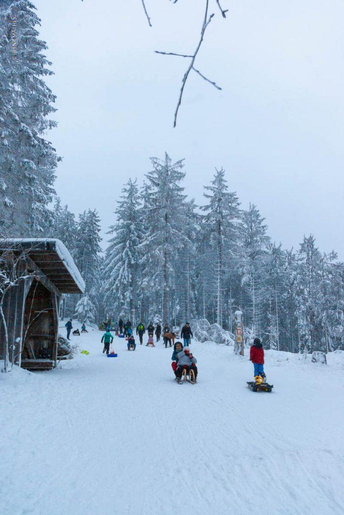 Winter Sport für Groß und Klein