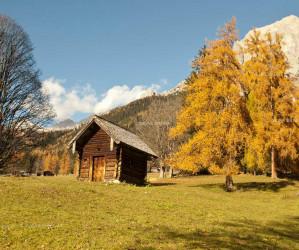 Herbst in Österreich. Fotografie Iryna Mathes